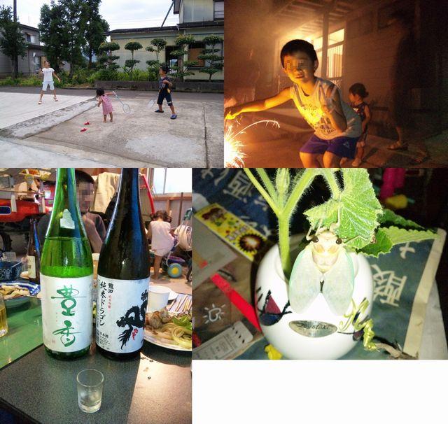 2010新潟 夏休み