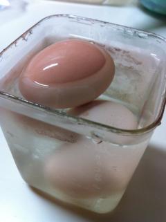 飽和食塩水