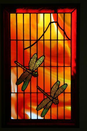 dragonfly1_convert_20140120115632.jpg
