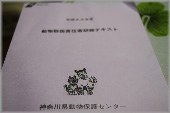2012.2.15 テキスト
