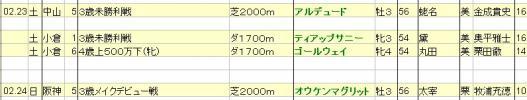 2013022324JRA発表