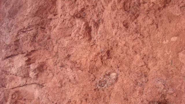 MAUIの赤土