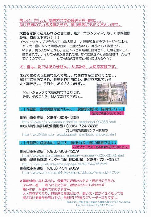 CCF20130609_00001.jpg