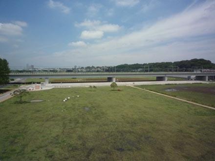 丸子橋からの眺め