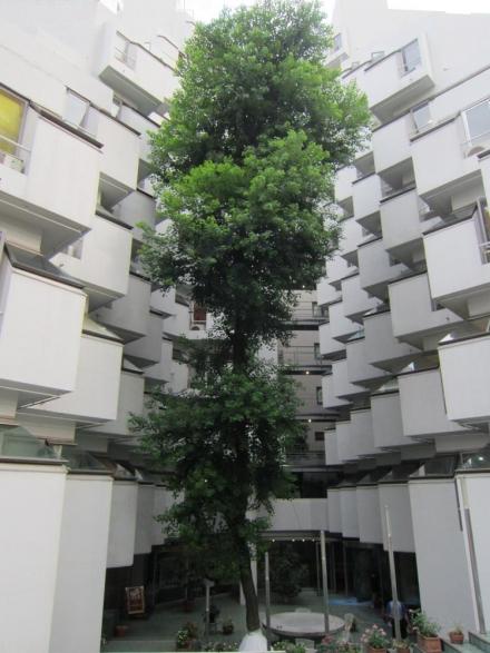 villa moderna ②