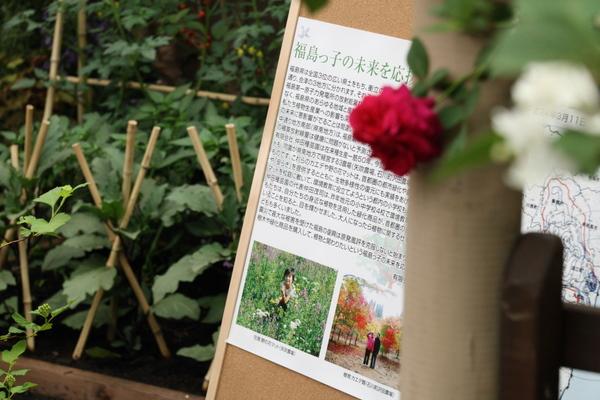 福島の風評被害