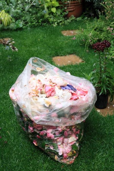 回収した花びら、花ガラ