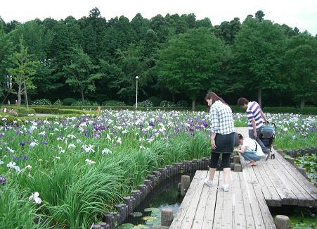袖ヶ浦公園3