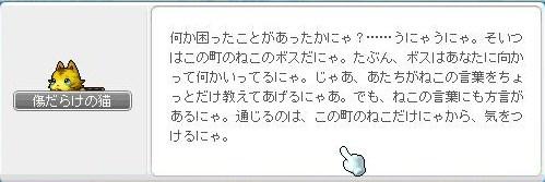 Maple110413_224541.jpg
