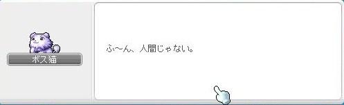 Maple110413_224606.jpg