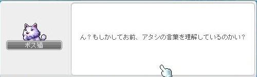 Maple110413_224611.jpg