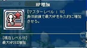 Maple110604_102449.jpg