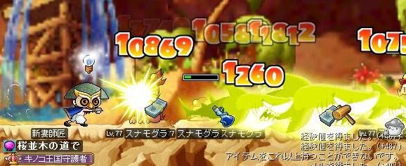 Maple110606_203617.jpg
