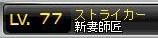 Maple110606_211532.jpg