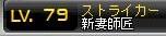 Maple110606_220113.jpg
