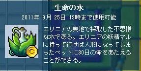 Maple110627_194604.jpg