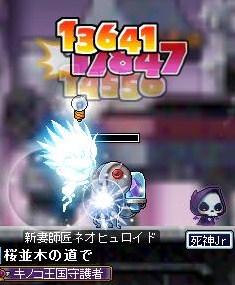Maple110701_164208.jpg