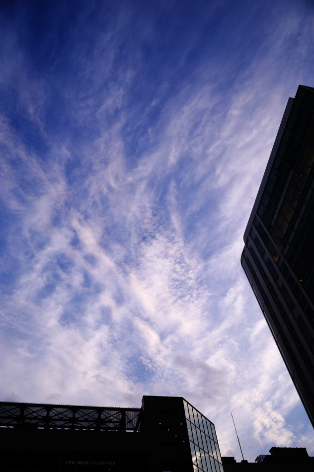 20110917-1008_akiba_008.jpg