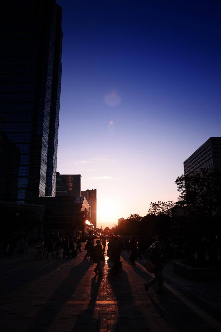 20111231_akibaC81_019.jpg