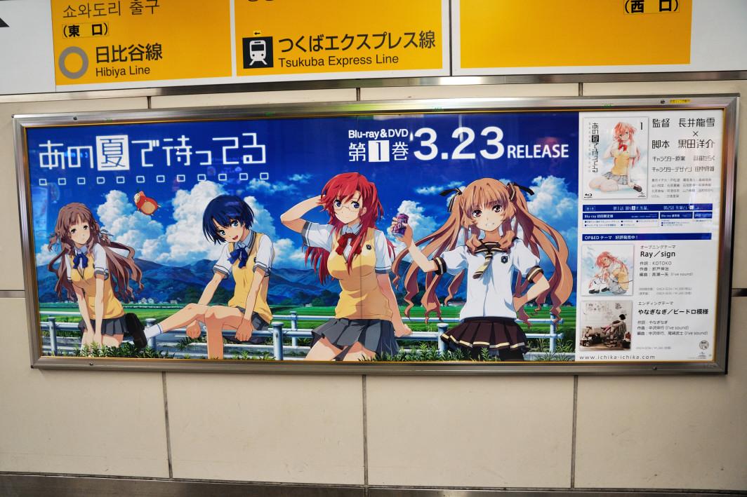 201120320_akiba_2_001.jpg