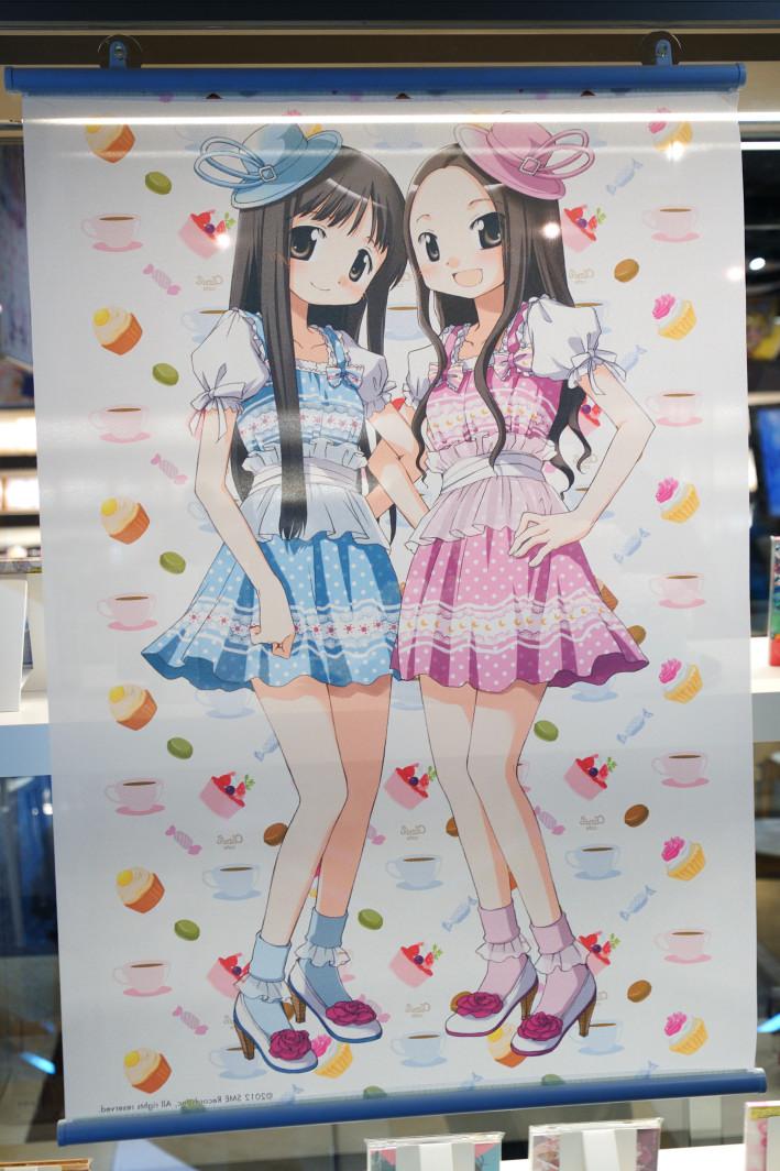 201120320_akiba_4_023.jpg