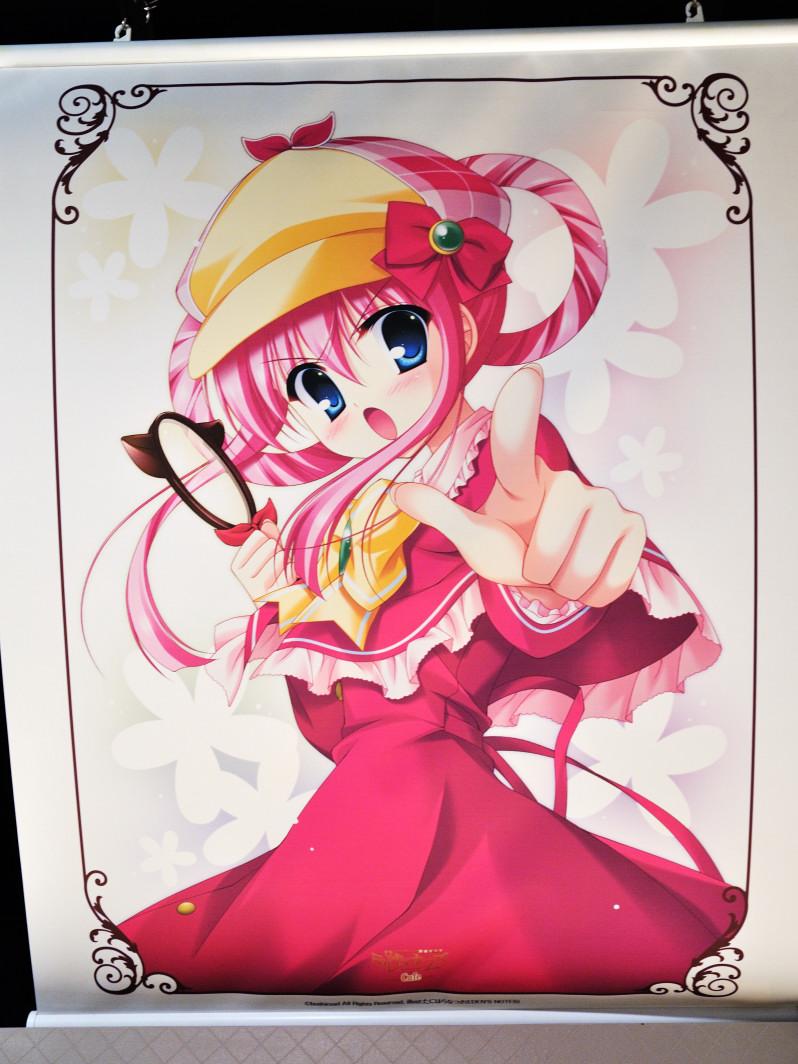 201120320_akiba_5_009.jpg