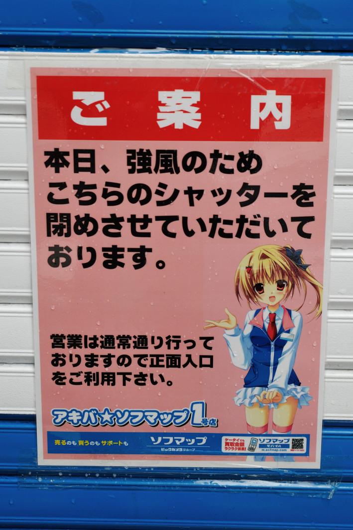 201120331_akiba_008.jpg