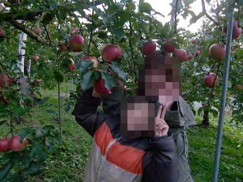 りんご狩り・ポン姉&チビ兄
