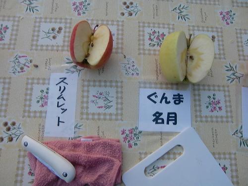 りんご狩り試食3