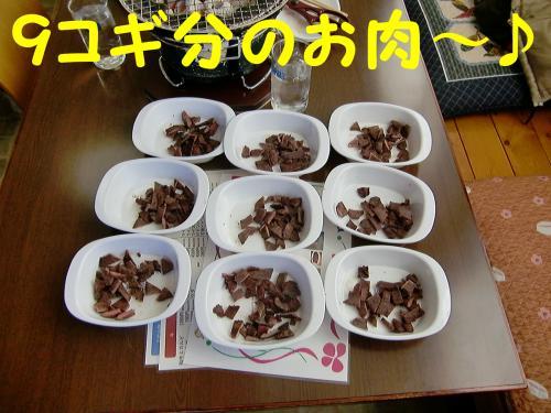 9コギのお肉