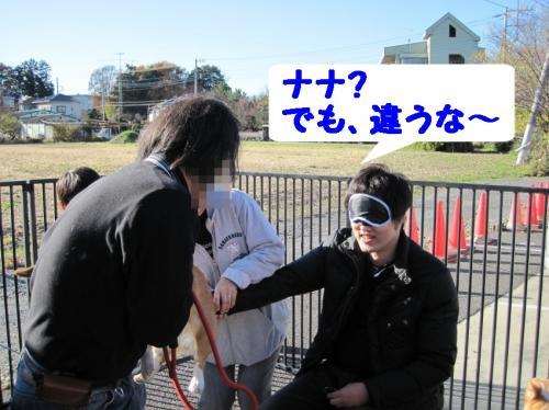 ゲーム1(ナナパパ)1