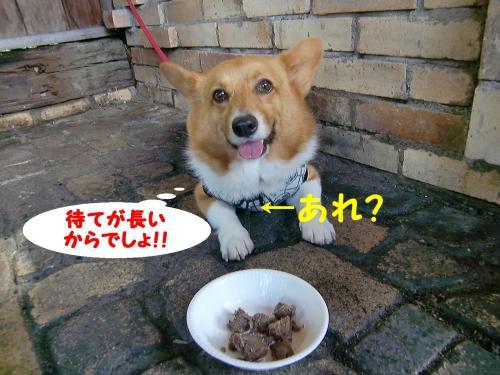 BBQ・ぎん1