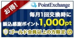 pointoex.jpg