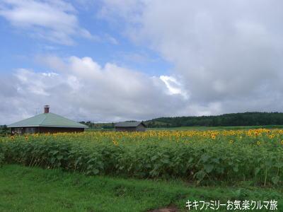 k-2010-9-22-7.jpg