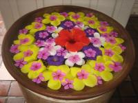 沖縄はお花でお出迎え!