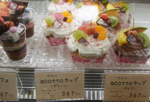 アコットRIMG0059