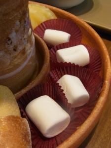 チョコレートショップハウテンぼすRIMG0393