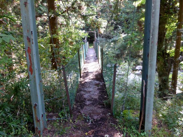 笹島キャンプ場の吊橋1