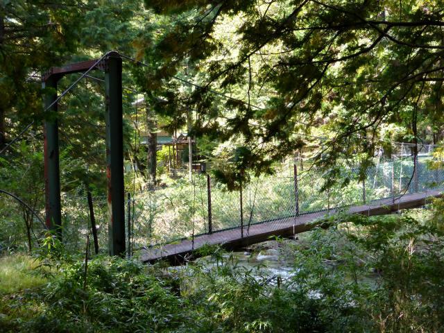 笹島キャンプ場の吊橋6