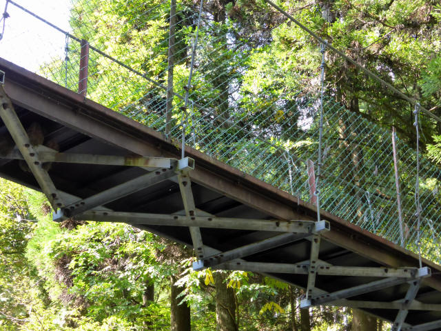 笹島キャンプ場の吊橋8