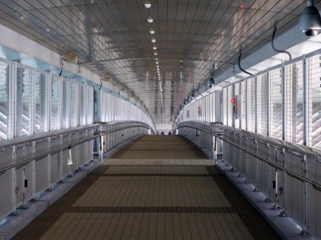 新湊大橋24