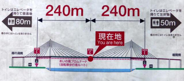 新湊大橋25