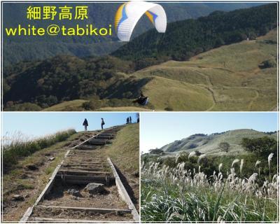 s2011‐10細野高原