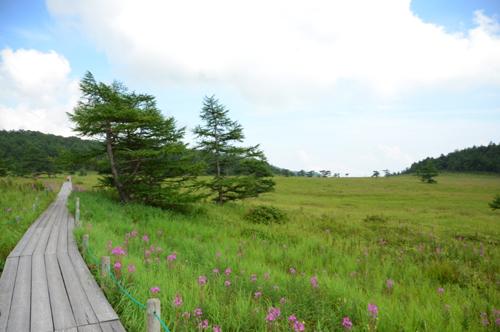 軽井沢-湯ノ丸1