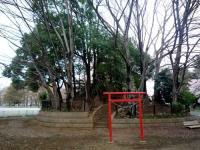 つつじヶ丘公園 富士塚
