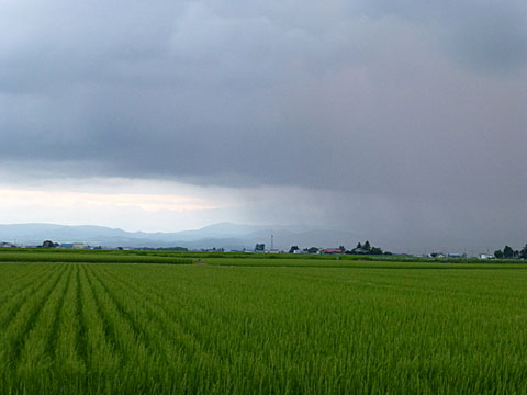 13 7/18 雨雲