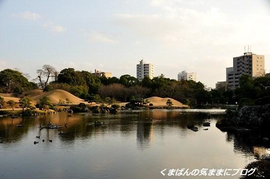 Nikon_20140101_162531_01.jpg