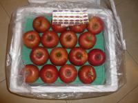 青森りんご130201