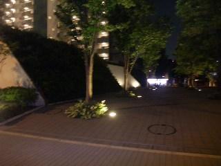 たいぞーの一歩っぽ-DSCF68331.JPG