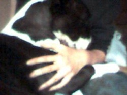 20081016-2.jpg